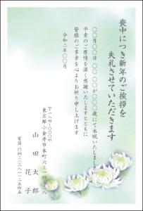 喪中はがき㉑ カラータイプ 菊 2020年